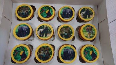 Cupcakes met foto/plaatje